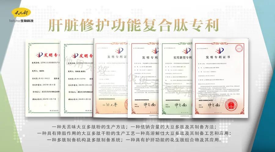 肝功能复合肽专利.jpg