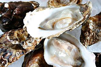 牡蛎肽oem代工
